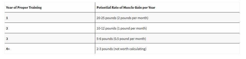 Muskelaufbau Trainingsdauer